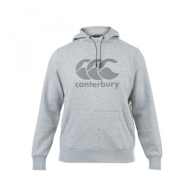 SWEAT HOODY CORE LARGE LOGO