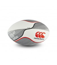 CATALAST ELITE MATCH BALL - TRAINING SILVER